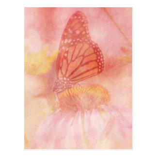 Pretty Pastel Butterfly Postcard