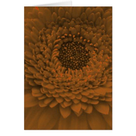 Pretty Peach Flower Card