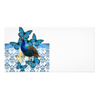 Pretty Peacock and blue butterflies Photo Card