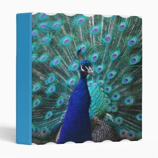 Pretty Peacock Binder