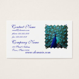 Pretty Peacock Business Card