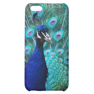 Pretty Peacock iPhone 4 Case