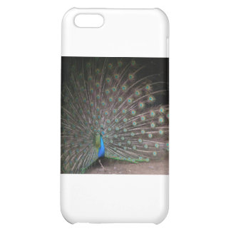 Pretty Peacock iPhone 5C Cases