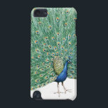"Pretty Peacock iPod Touch (5th Generation) Cover<br><div class=""desc"">Pretty Peacock vintage birds</div>"