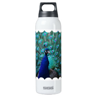 Pretty Peacock SIGG Thermo 0.5L Insulated Bottle