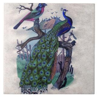 Pretty Peacock with Bird Ceramic Tile
