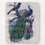 Pretty Peacock with Bird Mousepad