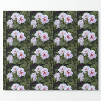 Pretty Peonies Wrapping Paper