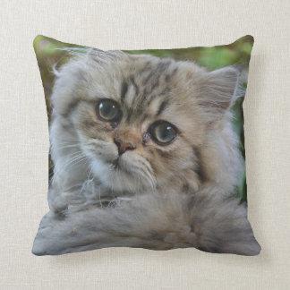 Pretty Persian Kitten Throw Pillow