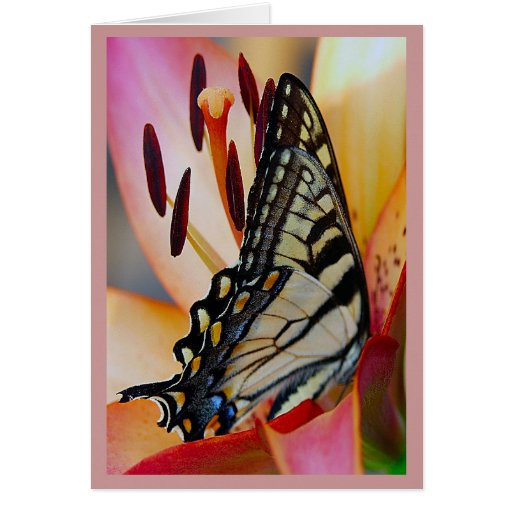 Pretty Petals Greeting Cards