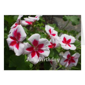 Pretty Petunias-July Birthday Card