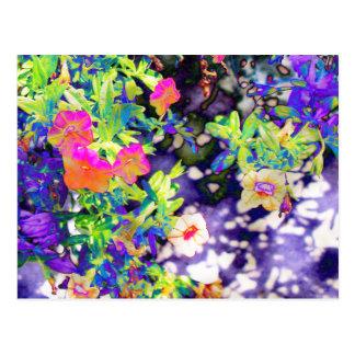 Pretty Petunias Postcard