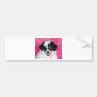 Pretty Phantom Parti Poodle Puppy on Pink Bumper Stickers