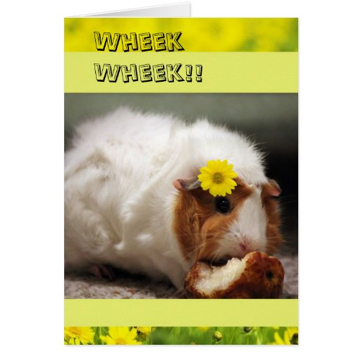 Pretty Pig Mothers Day Card