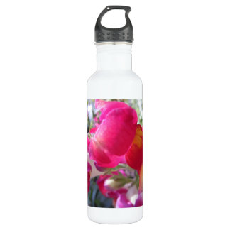 Pretty Pink and White Snaps Stainless Steel Water Bottle