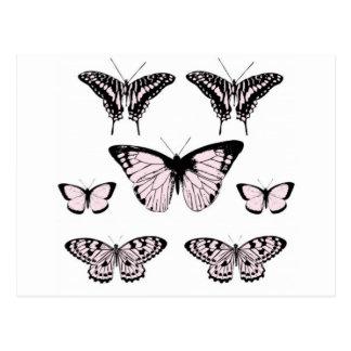 Pretty Pink Butterflies Postcard
