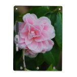 Pretty Pink Camelia Dry Erase Board