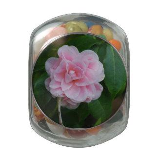 Pretty Pink Camelia Glass Candy Jars