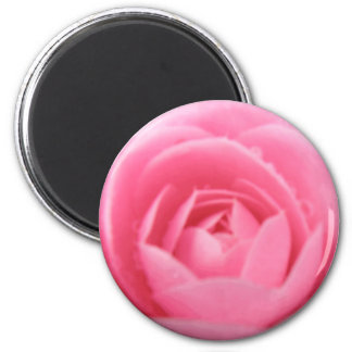 Pretty Pink Camellia Flower Magnet