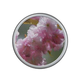 Pretty Pink Cherry Blossoms Speaker