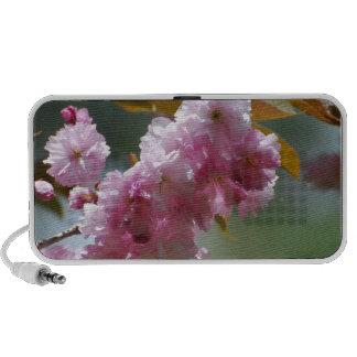 Pretty Pink Cherry Blossoms Mp3 Speaker