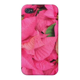 Pretty Pink Christmas Poinsettia Flowers Cases For iPhone 4
