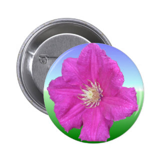 Pretty Pink Clematis Flower 2 Inch Round Button