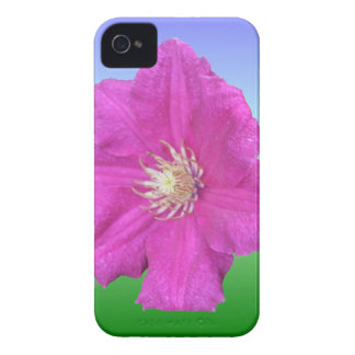 Pretty Pink Clematis Flower iPhone 4 Case-Mate Cases