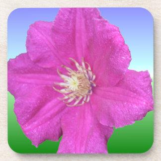 Pretty Pink Clematis Flower Coaster