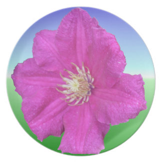 Pretty Pink Clematis Flower Decorative Party Plates
