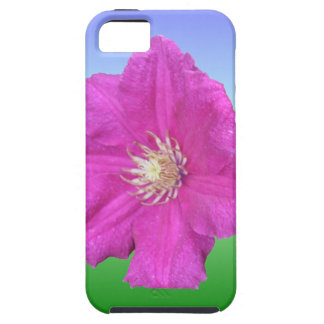 Pretty Pink Clematis Flower iPhone 5 Case