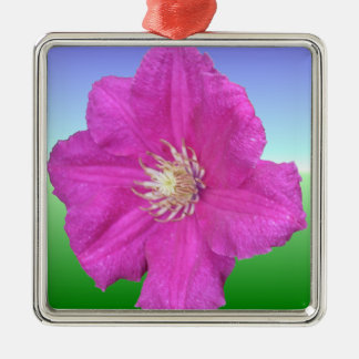 Pretty Pink Clematis Flower Square Metal Christmas Ornament