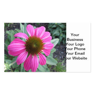Pretty Pink Coneflower Double-Sided Standard Business Cards (Pack Of 100)