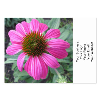 Pretty Pink Coneflower Large Business Cards (Pack Of 100)