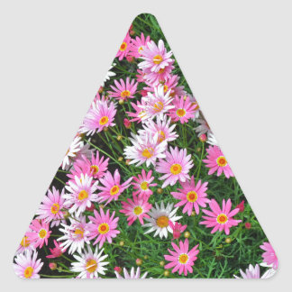 Pretty pink daisies floral pattern triangle sticker