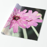 Pretty pink daisy flower. Floral photo art. Gift Wrap Paper