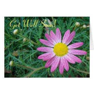 Pretty Pink Daisy Greeting Card