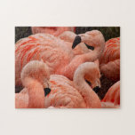 "Pretty pink flamingo print puzzle<br><div class=""desc"">Pretty pink flamingo birds print puzzle</div>"