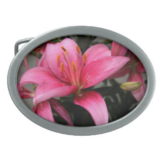 Pretty Pink Flower in Bloom and Buds Oval Belt Buckles