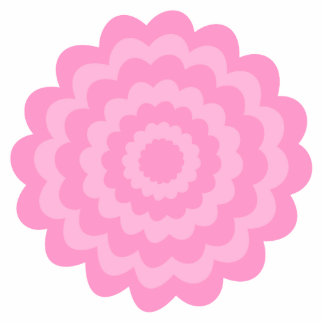 Pretty pink flower. White Background. Cut Out