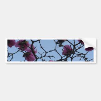 Pretty Pink Flowers against a Blue Sky Bumper Sticker