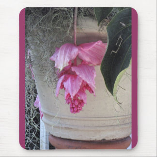 Pretty Pink Flowers, Flower Pot Mouse Pad