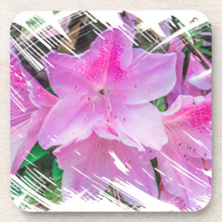 Pretty Pink Flowers in the Sun Beverage Coasters
