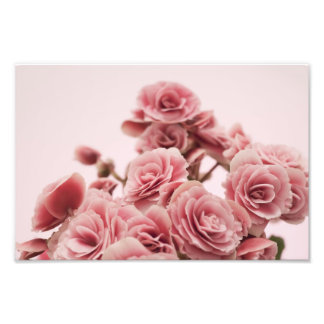 Pretty Pink flowers Photo Print