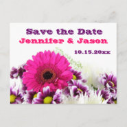 Pretty Pink Gerber Daisy and Purple Wedding Set Post Cards