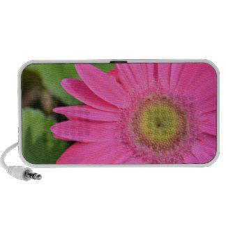 Pretty Pink Gerbera Travelling Speakers