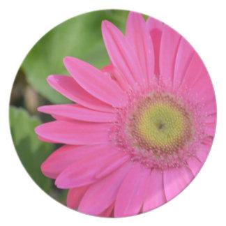 Pretty Pink Gerberas Plate