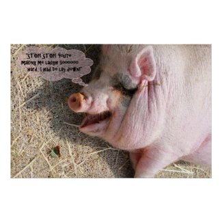 Pretty Pink-Grey Pig is Laughing So Hard