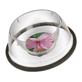 Pretty Pink Hibiscus Pet Bowl