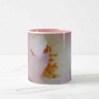Pretty pink macro rose Two-Tone coffee mug
